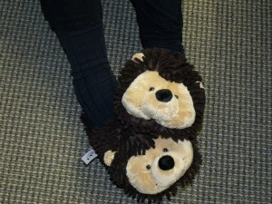 Jane's hedghog slippers
